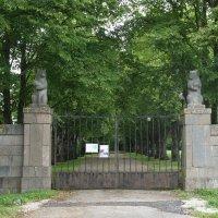 Медвежьи ворота - ведут в липовую аллею и ворота дворцового сада :: Елена Павлова (Смолова)