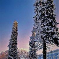 Старинная усадьба Куркино :: Валерий Талашов
