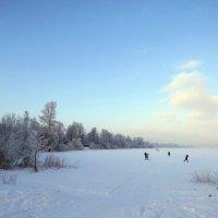 Зима на озере :: Вера Щукина