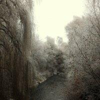 зимняя река... Как же ХОЛОДНА.. :: Эдвард Фогель