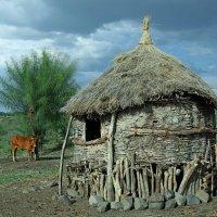 Элитное жильё Эфиопии :: Евгений Печенин