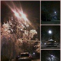 Зима... идёт.... :: maxim