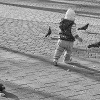 Лети, птичка, лети :: Андрей Майоров