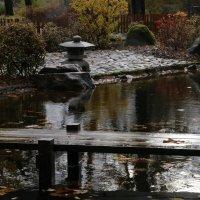 Японский садик. :: юрий