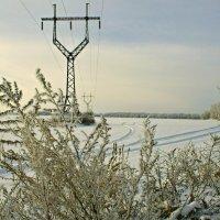 Зимний день. :: владимир