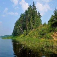 На берегу Мологи реки... :: Sergey Gordoff