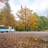 Павловский парк.. :: Алексей Цветков