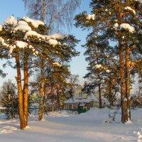 Зимний вечер 4 :: Виталий