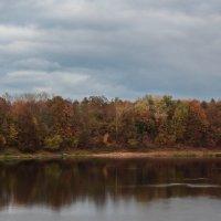 Осень на реке Луга :: Любовь Анищенко