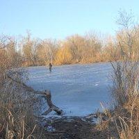Застыли небольшие озёра, первые рыбаки вышли на молодой лёд :: Галина