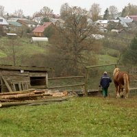 Жизнь деревенская :: Алексей Дмитриев