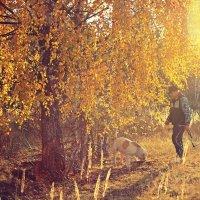 прогулка в осень :: оксана