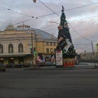 Цирк и елка :: Митя Дмитрий Митя