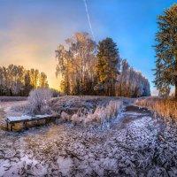 Замёрзший пруд. :: Фёдор. Лашков