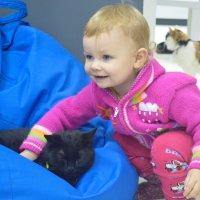 внучка и коты :: сергей