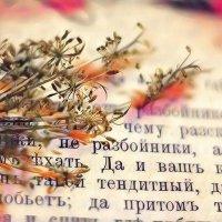 Ретро :: Ирина Сивовол