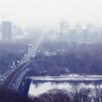 Туманные дали. :: Svetlana