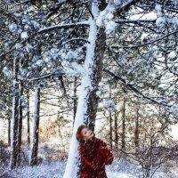 Сквозь снег. :: Татьяна Гордеева