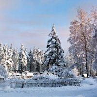 зимний день :: Ирина Смирнова