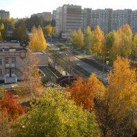 Осень в г. Ижевск :: Александр Попков