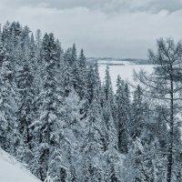 Заснеженные берега. :: Svetlana