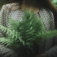 Лесные мотивы :: Da Zh