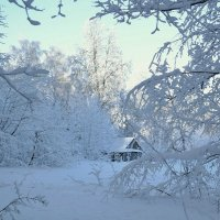 Зимник :: Yasnji