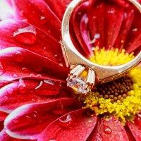 Обручальное кольцо :: Valentyn Semenov