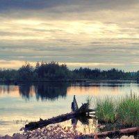 Летний закат :: Анна Дорофеева