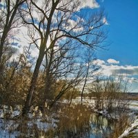 У студеной воды :: Мария Богуславская