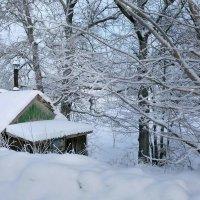 Под снежным покрывалом. :: Алла ************