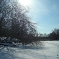 Прогулка по озеру солнечным днем... :: марина ковшова