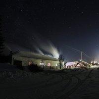 морозная ночь :: евгения