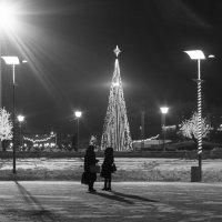 В ожидании нового года :: Dmitriy Predybailo