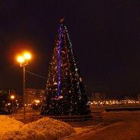 К встрече Нового года готовы :: Андрей Лукьянов