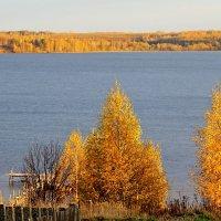 Осень :: Елена Малкова