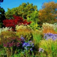Краски осени :: Nina Yudicheva