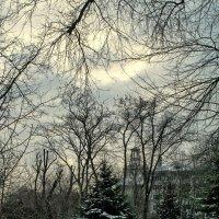 Зимний вечер :: Дмитрий