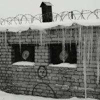 друг автобота :: Юрий Новичков