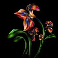 Буйство красок :: GeminiArt II