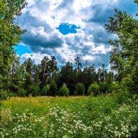 Чуточку лета... :: Дмитрий Янтарев