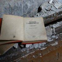 На развалинах СССР :: Валерий Чепкасов