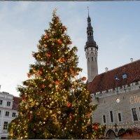 С Новым Годом!!! :: Jossif Braschinsky