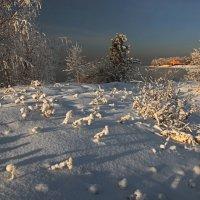 Зимой на острове... :: Александр Попов