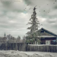 Зимний сюжет :: Sergey Komarov
