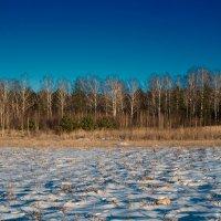 Снеговые волны. :: Андрий Майковский