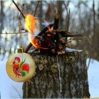 Не опалите крылышки в новом году! :: Андрей Заломленков
