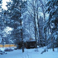 Вечер зимний, вечер снежный... :: Регина Пупач