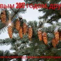 С новым годом! :: Милешкин Владимир Алексеевич