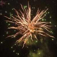 Всех с Новым Годом! :: Колибри М